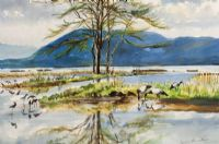WETLANDS by Coralie de Burgh Kinahan at Ross's Auctions