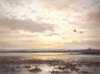 MALLARDS OVER STRANGFORD by David Long UWS at Ross's Auctions