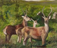 DERRYREEL DEER by Sean McAuley at Ross's Auctions