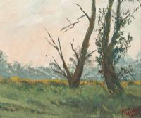 TREES IN THE MORNING LIGHT by John Halliday at Ross's Auctions
