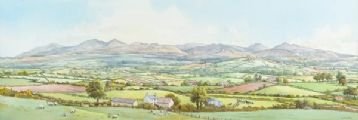 TOWARDS THE MOURNES by Beth Cheney at Ross's Auctions