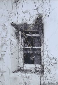 BRIARY WINDOW by Geoff Bocking at Ross's Auctions