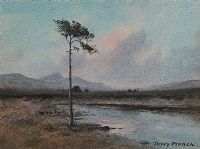THE LONELY TREE, CONNEMARA by William Percy  French at Ross's Auctions