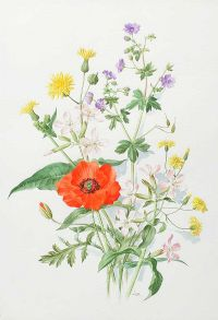FIELD FLOWERS by Anne Marie Trechslin at Ross's Auctions