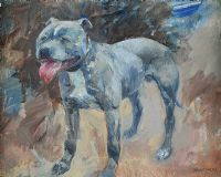 BLUE (DOG STUDY) by Basil Blackshaw HRHA HRUA at Ross's Auctions