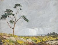 TREE NEAR FAIRHEAD by Frank Hargy at Ross's Auctions