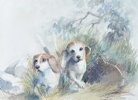 BEAGLES by Lesley Murdoch at Ross's Auctions