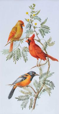VIRGINIAN CARDINAL AND TROUPIAL by Anne Marie Trechslin at Ross's Auctions