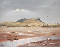 SCRABO FROM BALLYDRAIN ROAD by Desmond Reid at Ross's Auctions