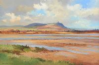 SCRABO TOWER ACROSS STRANGFORD LOUGH by David Long UWS at Ross's Auctions