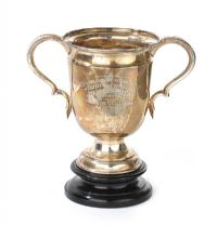 SILVER TROPHY at Ross's Auctions