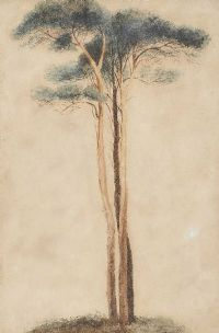 TREE STUDY by Andrew Nicholl RHA at Ross's Auctions