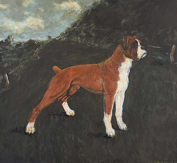 STANDING BOXER by Basil Blackshaw HRHA HRUA at Ross's Online Art Auctions