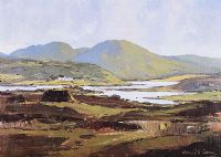 DONEGAL by Gerald J.A. Carson at Ross's Auctions