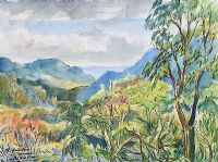 THE RAINFOREST, TRINIDAD by Coralie de Burgh Kinahan at Ross's Auctions