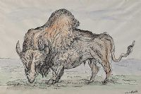 STUDY OF A BISON by George Campbell RHA RUA at Ross's Auctions
