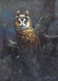 STUDY OF AN OWL by Julian Friers RUA at Ross's Auctions