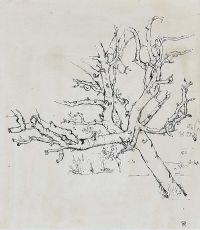 TREE STUDY by Colin Middleton RHA RUA at Ross's Auctions