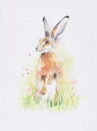 STUDY OF A HARE by Ellie Smith at Ross's Auctions