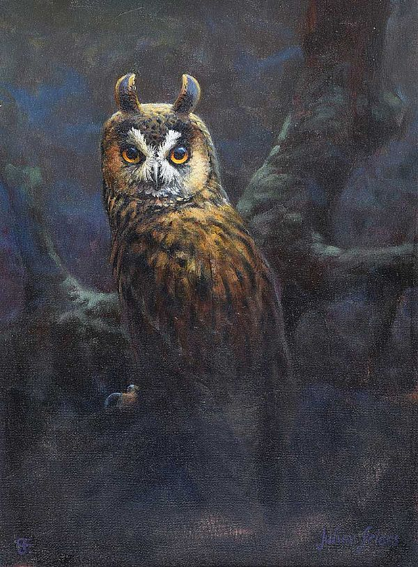 STUDY OF AN OWL by Julian Friers RUA at Ross's Online Art Auctions