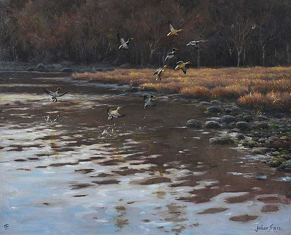 MALLARDS OVER WATER by Julian Friers RUA at Ross's Online Art Auctions