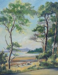 SCRABO TOWER ACROSS STRANGFORD LOUGH by Allan Ardies at Ross's Auctions