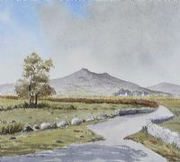 THE MOURNES FROM ANNALONG by Rosemary Wilson at Ross's Auctions