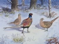 PHEASANTS IN WINTER by Robert W. Milliken at Ross's Auctions