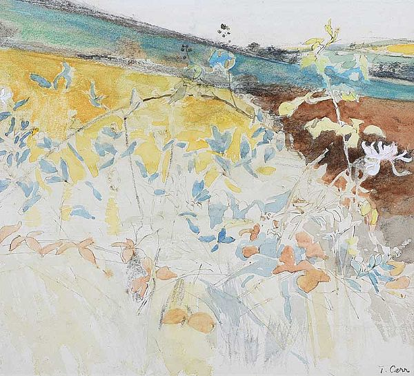 COUNTY DOWN LANDSCAPE by Tom Carr HRHA RUA RWS at Ross's Online Art Auctions