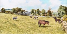 HORSES GRAZING, CASTLEREAGH by Gerald Walby at Ross's Auctions