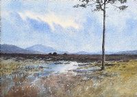 TREE, TURF STACKS & BOGLANDS, CONNEMARA by William Percy  French at Ross's Auctions