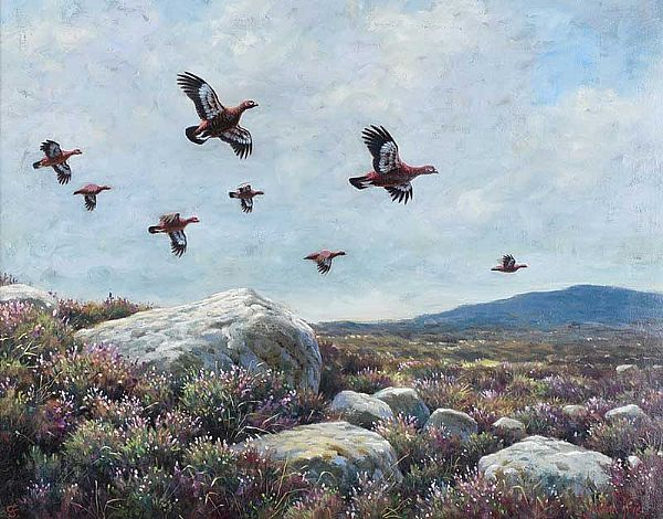 GROUSE OVER THE MOORS by Julian Friers RUA at Ross's Online Art Auctions
