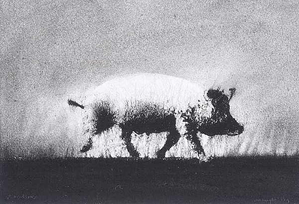 MIDNIGHT PIG by Ross Wilson ARUA at Ross's Online Art Auctions