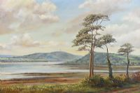 SCRABO TOWER ACROSS STRANGFORD LOUGH by Vittorio Cerefice at Ross's Auctions