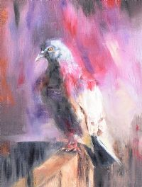 THE PIGEON by Michael Smyth at Ross's Auctions