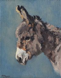 STUDY OF A YOUNG DONKEY by Anne Primrose  Jury HRUA at Ross's Auctions