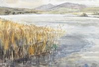FROM BOA ISLAND, REEDS & WATER by Kathleen Bridle RUA at Ross's Auctions