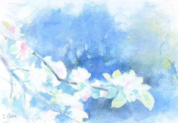 BLOSSOM BY THE RIVER LAGAN by Tom Carr HRHA RUA RWS at Ross's Online Art Auctions